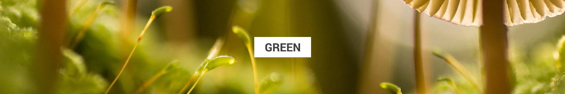 expert-green
