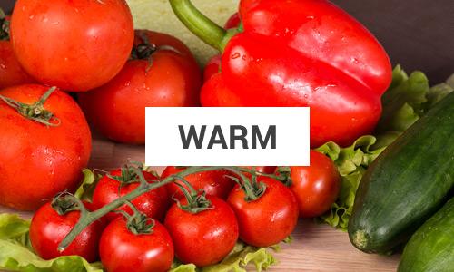 expert-warm